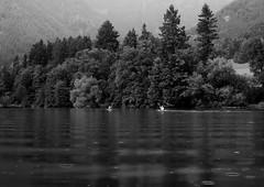 The meeting point (Dejan Hudoletnjak) Tags: landscape people couple kayaks kayak canou canouers kayakers love meeting point blackwhite bw rain lake preddvor slovenia