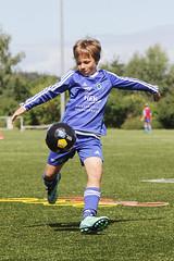 Feriencamp Eutin 09.08.16 - p (15) (HSV-Fuballschule) Tags: hsv fussballschule feriencamp eutin vom 0808 bis 12082016