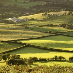 Photo of Not far from home, the Usk Valley close to the little Welsh village of Defynnog, near Brecon, lit up with evening summer sunshine as though poured over with liquid gold. I think there are worse places in which to take one's evening constitutional...  As a