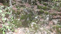 mamut-chokrak_cave_09 (ProSpeleo) Tags: cave mamutchokrak crimea bajdarsky valley russia kizilovoe karst