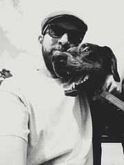 Rocky & ich (robertpistor) Tags: canon canonpowershot dobermannlabrador dobermann labrador dogs dog hund