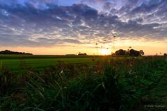 A dutch sunrise (Jantje1972) Tags: nederland zonsopkomst sunrise netherlands clouds wolken