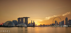 Transphase (draken413o) Tags: singapore cityscapes skyline skyscrapers sunset marina bay urban places scenes warm yellow asia travel destinations wow amazing 24mm tilt shift canon