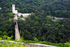 IMG_9508 - spoleto - il ponte delle torri (molovate) Tags: torre ponte tafme spoleto festivaldeiduemondi umbria vista superiore alto panoramica verde bosco perugia molovate volate