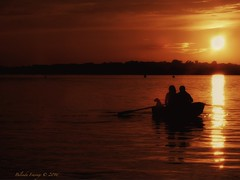 Romantic Sunset (Belinda Fewings (3 million views. Thank You)) Tags: belindafewings panasoniclumixdmc bokeh city street seaside colour colourful artistic pbwa creativeartphotograhy creative arty beautiful beautify beauty lovely outdoors outside out best depthoffield sunset silhouetting silhouette christchurch harbour dorset people dog riverstour christchurchharbour orange evening september