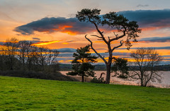 llangorse lake (technodean2000) Tags: llangorse lake is largest natural wales situated brecon beacons national park near town village llangors nikon d610 sunset serene outdoor water sky dusk sea skyline field landscape cloud river