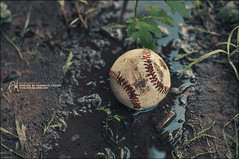 #51 When it Bothers You, Hit it Like a Baseball (Abdulla Attamimi Photos [@AbdullaAmm]) Tags: usa water sport america ball photography us photo nikon baseball photos photographic american 2008 2012  amm   d90    tamimi     altamimi  attamimi  abdullaamm     abdullaattamimi abdullahattamimi abdullaammcom whenitbothersyouhititlikeabaseball