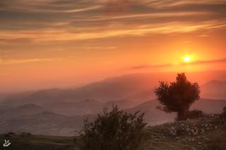 12 Mejores fotos del año 2012 (GRACIAS A TOD@S)