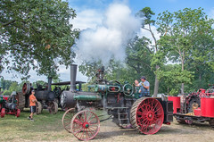 Sycamore Steam Show