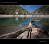 Lago di san Domenico - Vecchio Tronco (Andrea di Florio (9.000.000 views!!!)) Tags: 2 6 3 verde nature alberi lago 1 solitude nuvole estate 5 fiume natureza 4 7 campagna acqua montagna paesaggio abruzzo laquila storico diga nubi scanno castrovalva serenità lagodisandomenico flickrdiamond goledelsagittario mygearandmeplatinum mygearandmediamond blinkagain andreadiflorio flickrstruereflection1 flickrstruereflection2 flickrstruereflection3 flickrstruereflection4 flickrstruereflection5 flickrstruereflection6 flickrstruereflection7 flickrstruereflectionlevel5 flickrstruereflectionexcellence rememberthatmomentlevel4 me2youphotographylevel2 me2youphotographylevel3 me2youphotographylevel1 me2youphotographylevel4 creativephotocafe bewiahn