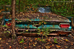 Ole' Pontiac (KvonK) Tags: fall abandoned leaves car rust september workshop hdr treee mcleans kvonk