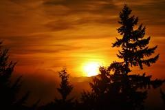 Bellevue Sunrise - 30 September 2012 (KurtClark) Tags: county autumn trees urban fall colors fog clouds sunrise washington king seasons suburban fallcolors canon20d cascades change suburb eastside bellevue cascademountains 70300mmlens urbanautumn boostcolor