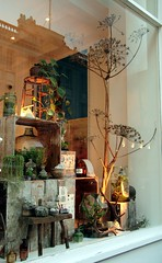 Hermetica London Window Display Revamp (Ken Marten) Tags: hermeticalondonhermetica londonkenmartenhalloweenwindowdisplayhalloweenwindowdisplaywindowdisplayterrariumsplantsgothiceclecticvintagebotanicalartplantscactisucculentsfernsmossretroskullantlershornscrystalsamethystquartz