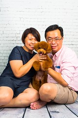 MATCHA LOW-12 (Michiez Chua Petography) Tags: poodle toypoodle singaporedog singapore redpoodle cute dog dogs canon 35mm studio studioshoot dogshoot
