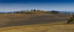 Colori morbidi sulle Crete senesi (maura.chiaberto) Tags: tuscany toscana crete senesi siena terra ocra gialla
