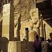 Ägypten 1999 (373) Theben West: Totentempel der Hatschepsut