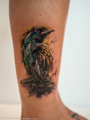 P7310822 (Cardinal Guzman) Tags: 2016 belfast northernireland paulowen titanicinternationaltattooco hummingbird ink tattoo tattoos titanicinternationaltattooconvention