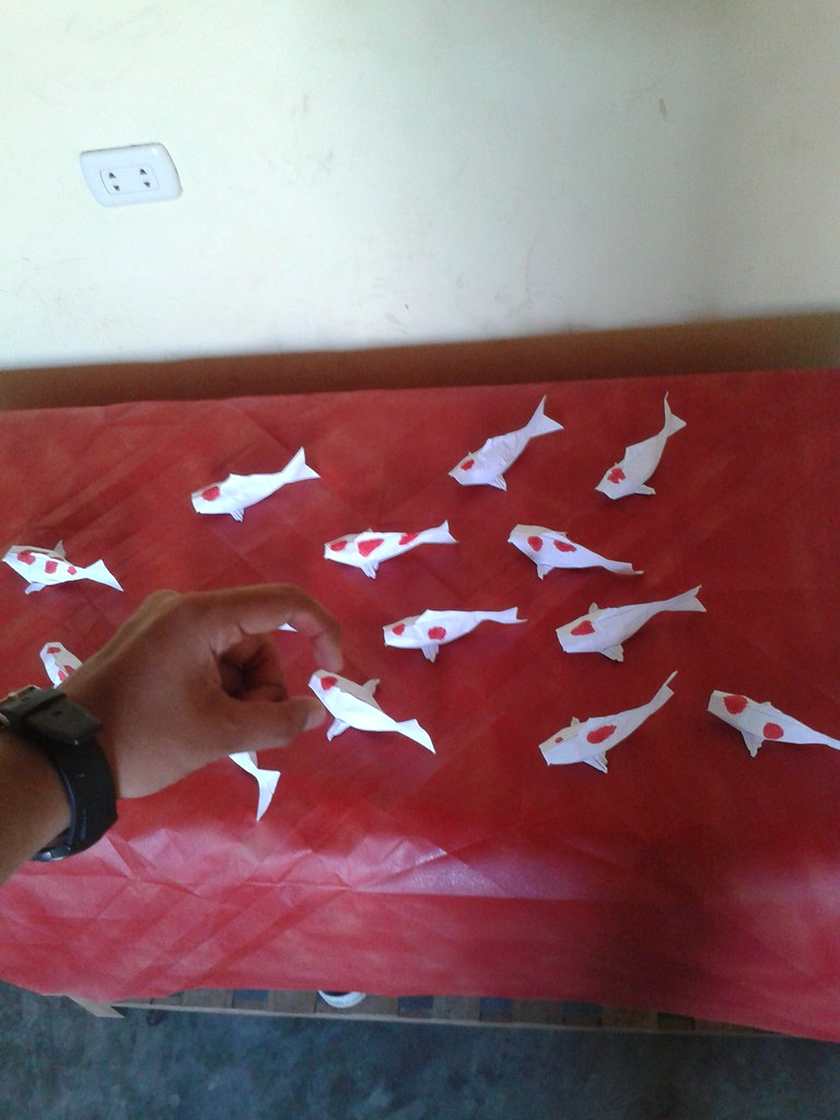 The Worlds Most Recently Posted Photos Of Mabona And Origami