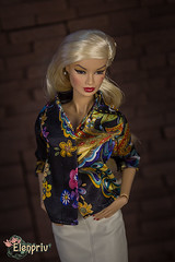 IMG_0058 (elenpriv) Tags: fashionroyalty doll elenpriv elena peredreeva kyori fame fable integrity toys handmade outfit