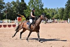 DSC_1108 (2) (ploufjf_64) Tags: paus show jumping chevaux pau 2016