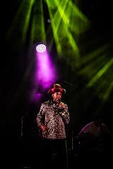 IMG_1782 (nicoloco) Tags: michael prophet riddim risers band pleinleswatts festival 19 08 16