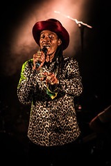 IMG_1778 (nicoloco) Tags: michael prophet riddim risers band pleinleswatts festival 19 08 16