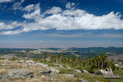 10,000 Feet View (kevin-palmer) Tags: bighornmountains bighornnationalforest cloudpeakwilderness wyoming august summer clear blue sky sunny nikond750 tamron2470mmf28 scenic view circularpolarizer pine trees clouds