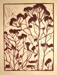 Eucalyptus Trees (Andreas Johns) Tags: woodcut eucalyptus