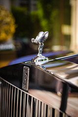 Rolls Royce (vapi photographie) Tags: rolls royce berline luxe limousine car supercar exotic nikon d7000 auto bouchon radiateur radiator cap jewelry badge logo phantom