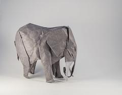 Elefante Artur Biernacki (Pere Olivella) Tags: elefant elefante elephant africa paquiderm paquidermo mamifero origami papiroflexia handmade arte art animal biernacki arturbiernacki