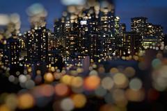 Floating Dreams of Sparkling City (Katrin Ray) Tags: floatingdreamsofsparklingcity bokehocean bluehourmagic bluehour summer bokeh blur magic downtown skyscrapers lights colours longexposure toronto ontario canada katrinray dreamscapesoftoronto tiltshift miniature canonphotography canon eos rebel t6i 750d