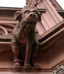 Strasbourg-2016-02-13-044 (Sambaphi) Tags: strasbourg alsace cathédrale cathedral sculpture gargouille gargoyle