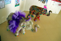 22.9.16 Elephants in Sheffield 098 (donald judge) Tags: sheffield herd of elephants chldrens hospital charity