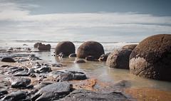 Moeraki Boulders (thebushdoctor) Tags: 5d 5dmk2 canon5dmk2 canon moeraki nz newzealand beach otago alienskinexposure4 tokinarmc28mmf28 tokina
