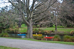 Canoeing on the Avon (Jocey K) Tags: trees newzealand christchurch sky people plants water gardens river canoes botanicalgardens avon pathway avonriver