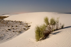 A blue moon over White Sands, New Mexico (DrewGaines) Tags: newmexico nature sand whitesands dunes gypsum alamogordo bluemoon cloudcroft d7000 drewgaines