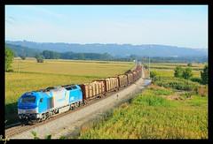 Sarria (***REGFA***) Tags: portugal train tren madera diesel cargo comboio sarria adif mercadorias vossloh comsa soporcel euro4000 takargo 335001 celbi euro400