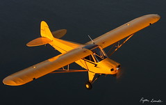 Legend Cub (Champion Air Photos) Tags:
