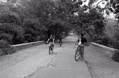 """""""I'm more optimistic about cycling right now than I've ever been."""" -- Greg LeMond (acharekar) Tags: road morning trees bicycle cycling nationalpark long jungle bnw milind borivali nokialumia800"""