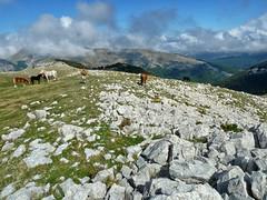 Escursionismo Velino - Monte Morrone da Corvaro