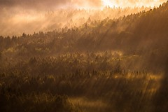 Morning fire (camelos) Tags: morning mountain fog sunrise deutschland winterberg sachsischeschweiz saskesvycarsko