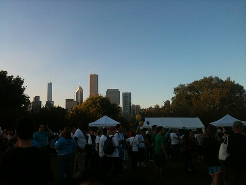NAMI Walk Chicago 2012