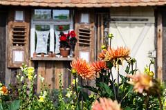 i-Dyll 2.0 (Schub@) Tags: flowers nature pentax natur pflanzen blumen idyll tamron garten f28 landesgartenschau 2012 k5 nagold 1750mm gardenlandesgartenschau