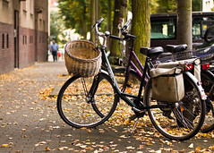 the transporter (angsthase.) Tags: people green fall cars leaves bike bicycle germany deutschland basket bokeh streetlife nrw grn dailylife friday bltter ruhrgebiet dortmund freitag 2012 korb ruhrpott mft explored micro43 olympuspenepl1 olympusm45mmf18