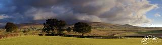 High Pike, Brae Fell & Longlands Fell