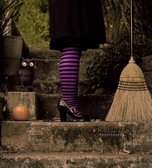 The worst witch (.•۫◦۪°•OhSoBoHo•۫◦۪°•) Tags: selfportrait halloween me canon pumpkin shoes witch spooky owl witches broom burton 2012 selfie stripeystockings canoneos40d yardbroom hmam 10secondtimerdash meagainmonday