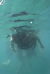 DSC09494 (andrewlorenzlong) Tags: fish swimming swim thailand snorkel sam snorkeling kohchang kohrang kohrangyai korangyai
