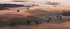 Misty Morning on the Farm (clay.wells) Tags: park county mist mountain fog rural sunrise canon lens landscape eos prime october jean state mark farm ii 5d arkansas usm perry ef 2012 petit 135mm img8563 morrilton f2l