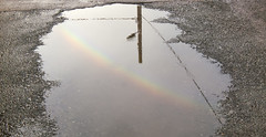 Arcobaleno in pozzanghera (bobo10378) Tags: arcobaleno pozzanghera riflesso dopolapioggia