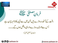 16-6-16) woodz (zaitoon.tv) Tags: saw message prophet mohammad islamic quran namaz hadees ahadees